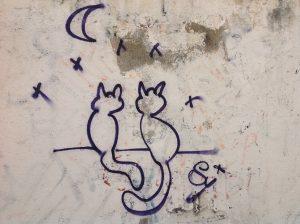 gatos a la fresca